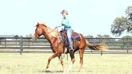 Sorrel Quarter Horse in WEATHERFORD, TX