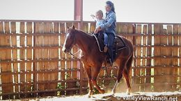 Sorrel Quarter Horse in Forney, TX