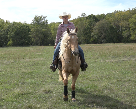 Palomino Quarter Horse in Pryor, OK